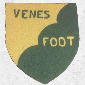 Décors teinté dans la masse Blason personnalisé - Deco facile a poser dans la Tarne (81)